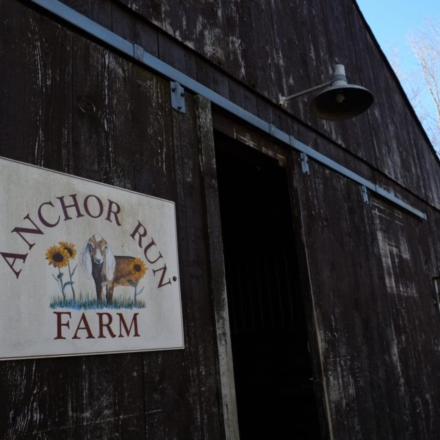Anchor Run Farms| CSA | Newtown Bucks County PA